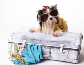 Can You Live Out of a Carry On Bag?