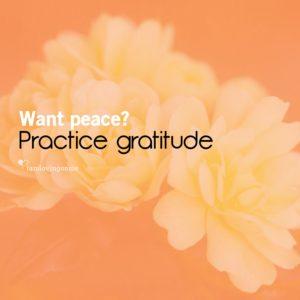 practice-gratitude-LOMDI-fri-7.11