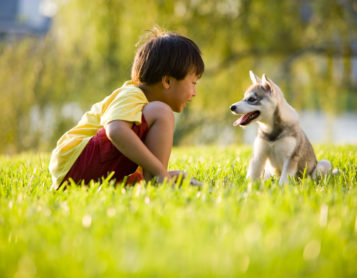 4 Life Lessons From Dogs and Kids